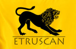 Etruscan Resources Inc